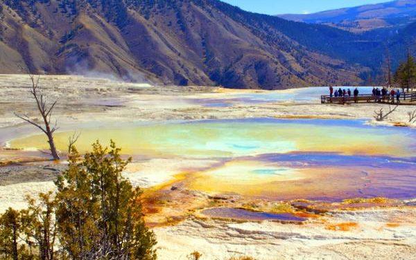 接機-黃石-太浩湖-大峽谷 9 天團